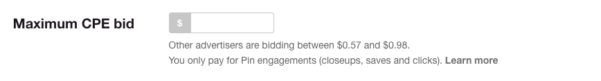 Budgets Pinterest Ads