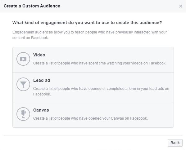 Custom Audience Remarketing