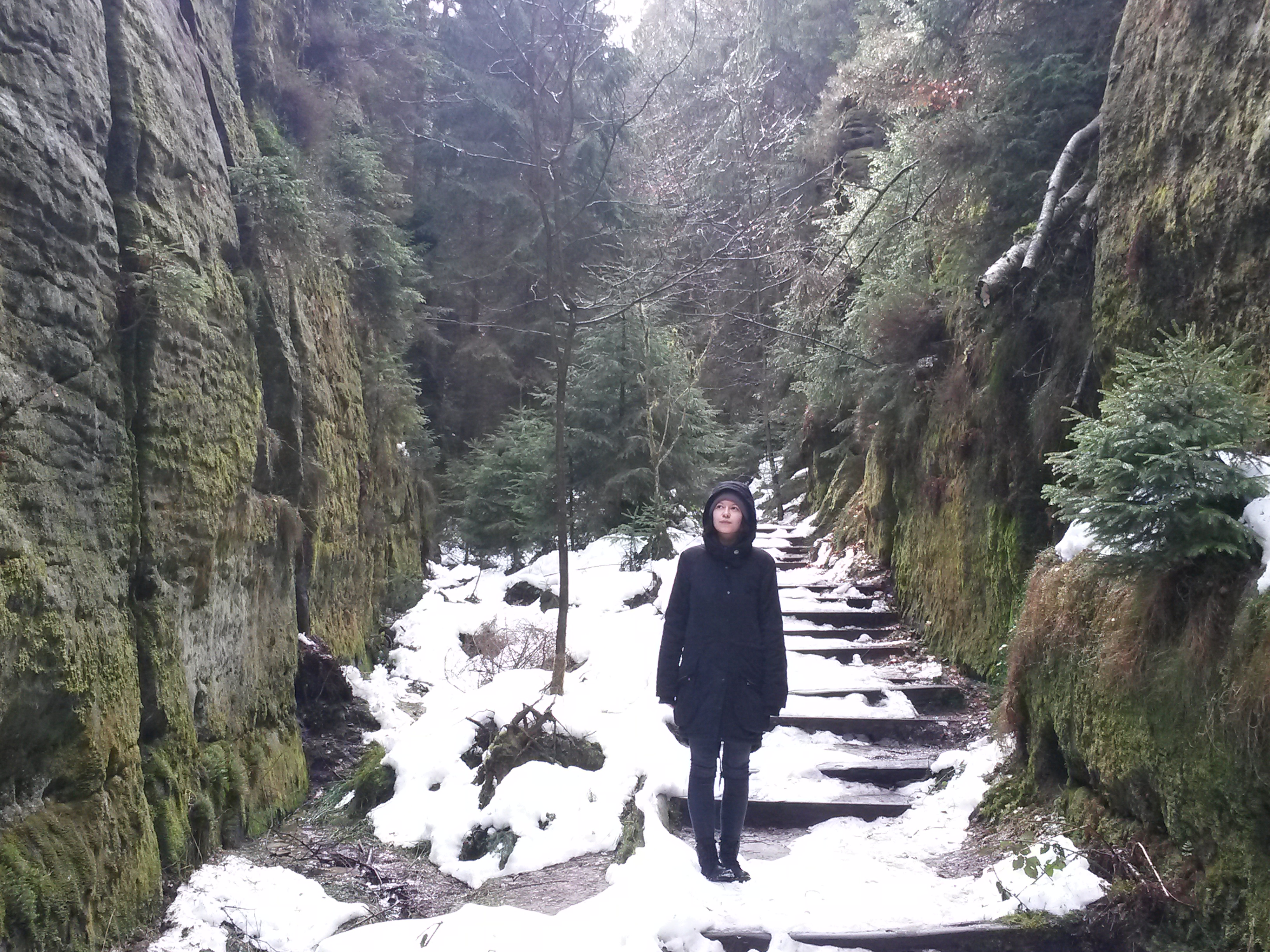 Rebecca Seidel, Trainee bei Projecter, im Interview