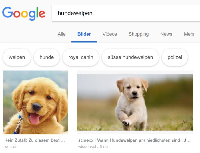 Darstellung von Seitentitel und Domain unter den Bildern