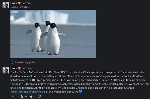 Screenshot Projecter Schrittzähl-Challenge 1