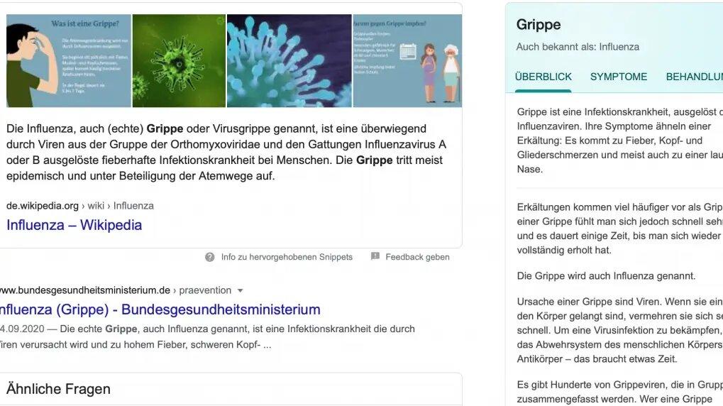 """Screenshot Google-Suche für """"Grippe"""" mit dem Knowledge Panel rechts"""