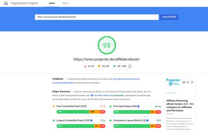 Screenshot Google Pagespeed Insights