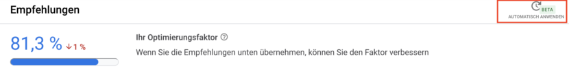 Screenshot Google Ads Optimierungsfaktor